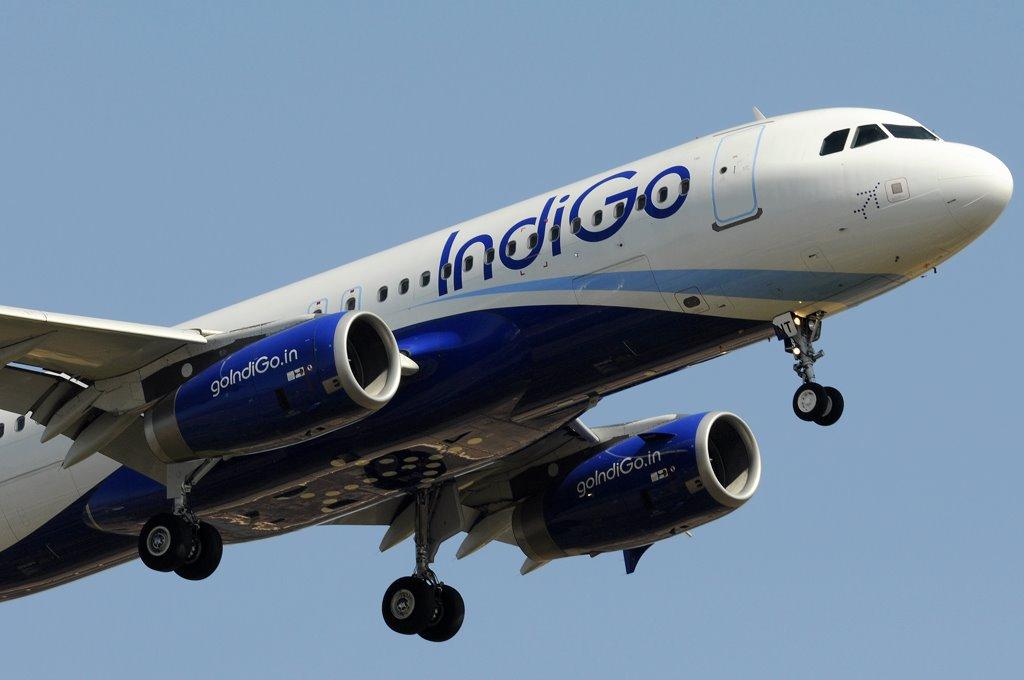 IndiGo_A320_VT-INT_LD_Nose